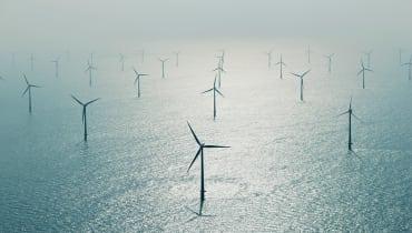 Wie uns das Meer im Kampf gegen den Klimawandel helfen könnte
