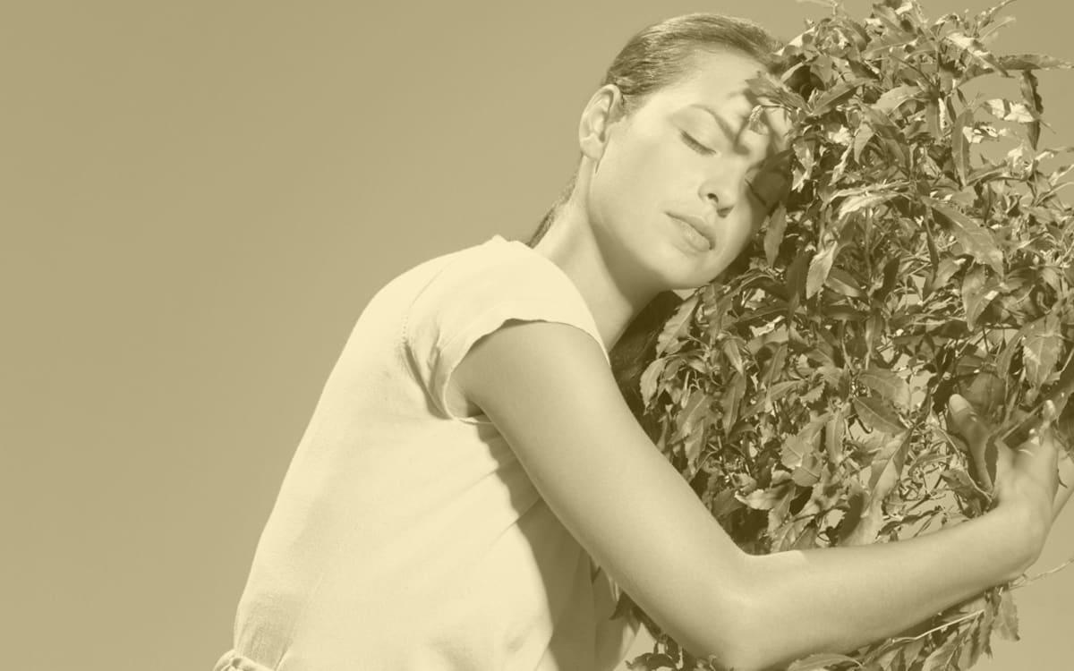 Hört auf, eure Pflanzen zu betatschen! Sie mögen das nicht