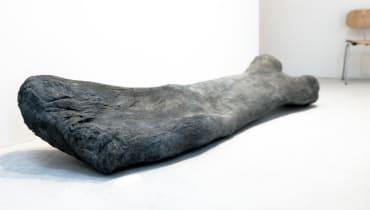 Kunst-Hacking-Team: Skandal um 250 Tonnen Dino-Knochen