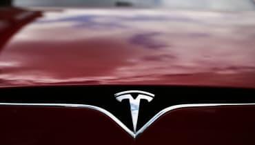 Elon Musk: Teslas könnten einen