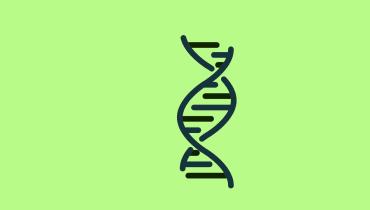 Wie Wissenschaftler den Code des Lebens umschreiben