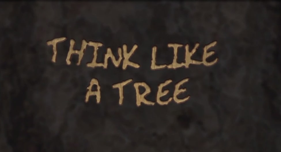 Think Like A Tree
