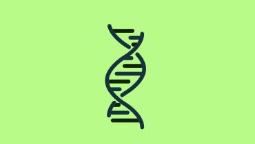 Warum wir unsere Musikdateien bald aus der DNA abrufen können