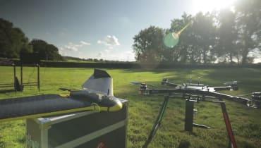 Drohnen sollen gegen das Abholzen der Wälder kämpfen