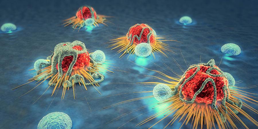 So kann Künstliche Intelligenz im Kampf gegen Krebs helfen | WIRED Germany