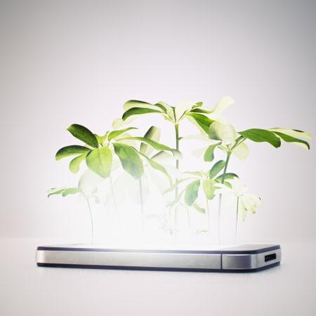 Die besten Pflanzen-Gadgets für den Spätsommer | WIRED Germany