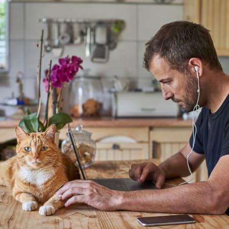 Remote Work : 10 Technik- und App-Empfehlungen fürs Homeoffice