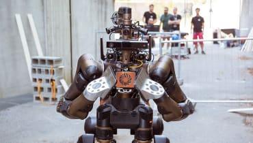 Dieser Robo-Zentaur kann Karate