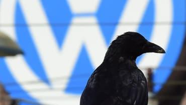 Machines Of Loving Grace / Der VW-Skandal zeigt unser Vertrauensproblem mit Software