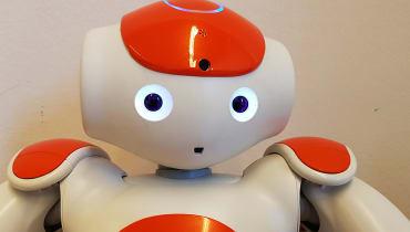 Warum es uns schwer fällt, einen bettelnden Roboter auszuschalten