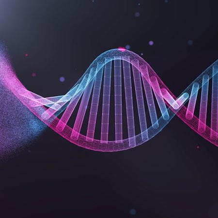 Der Schlüssel zu einem langen Leben liegt (fast) nicht in unseren Genen | WIRED Germany