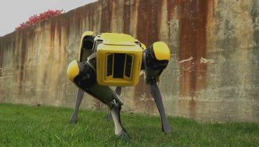 Boston Dynamics will Roboterhund SpotMini auf den Markt bringen
