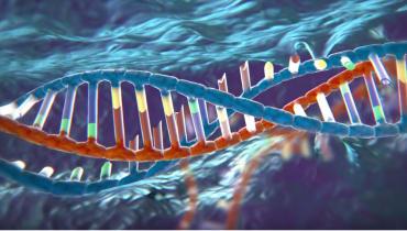 Editas Medicine will eine Ursache für Blindheit mit DNA-Reparaturen behandeln