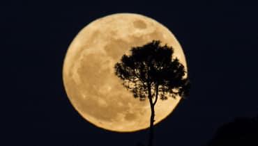 WIRED erklärt: Blutmond, Supermond und Blauer Mond