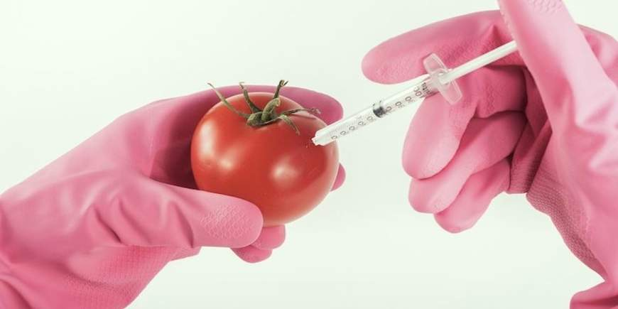 We Deserve to Know: An Acupuncturist's Perspective on GM Foods
