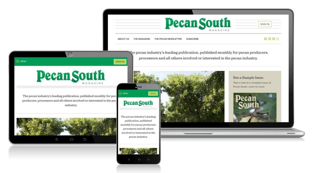pecan-south-responsive.jpg