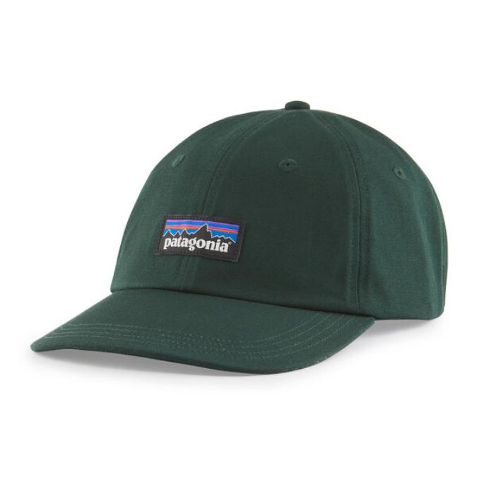 Patagonia-P-6 Label Trad Cap