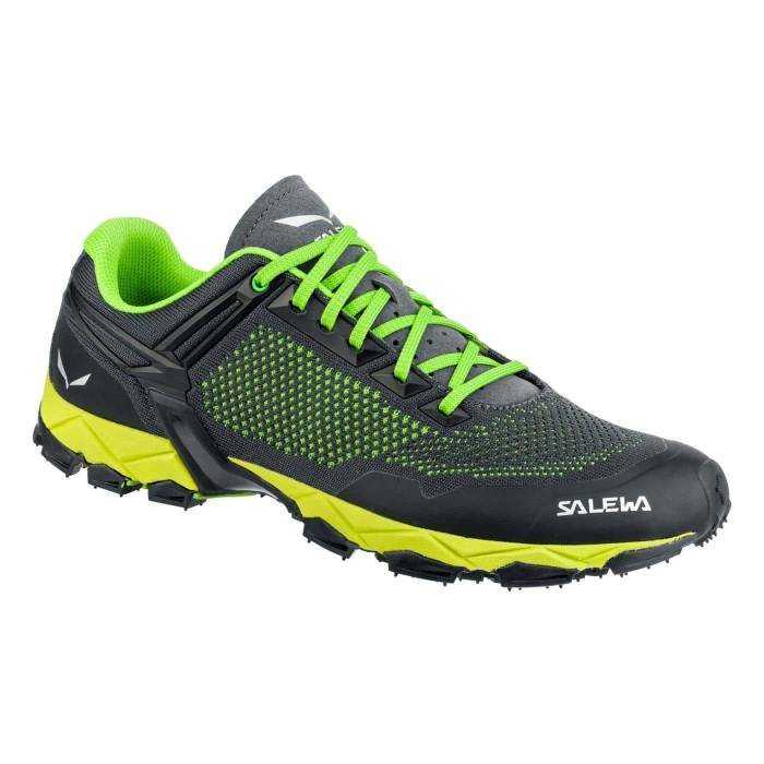 Salewa-Lite Train K - Men's