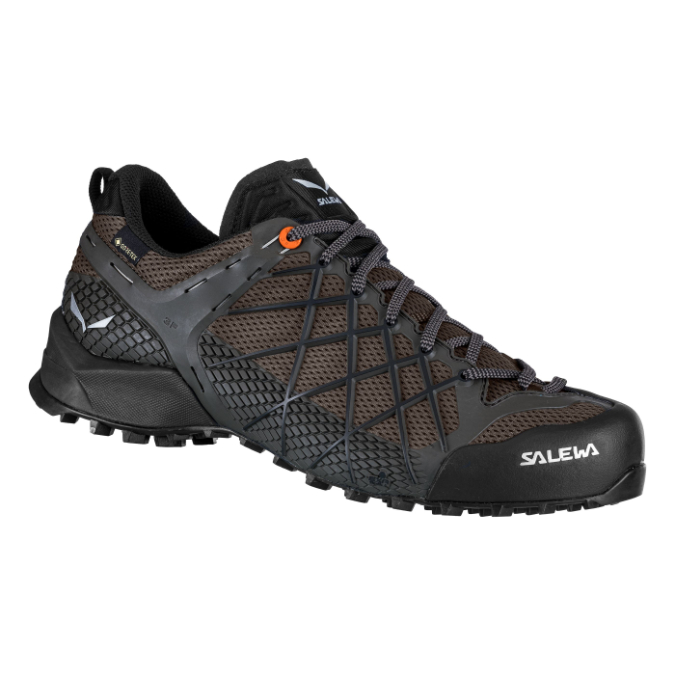 Salewa-Wildfire GTX - Men's