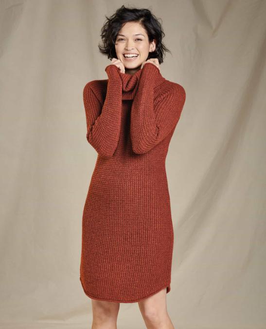 Toad & Co-Chelsea Turtleneck Dress - Women's
