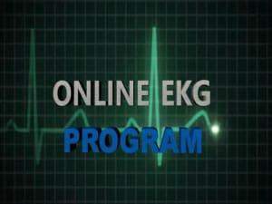 Online EKG Program Image