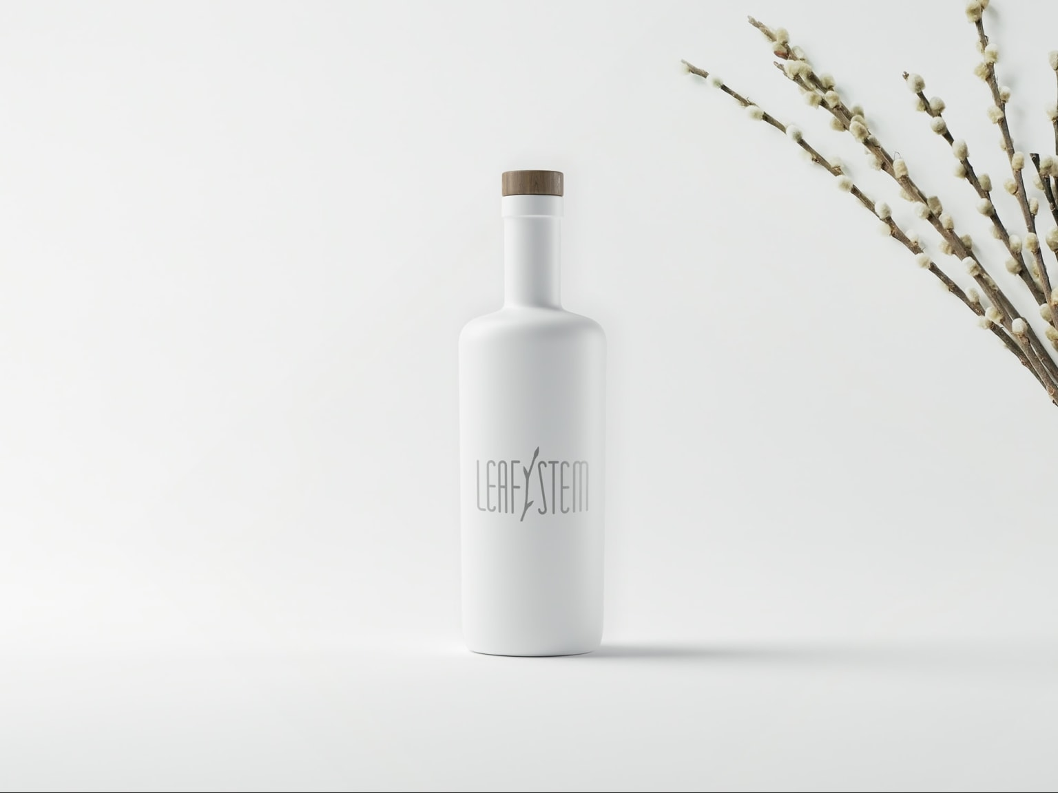 Beauty Brand & Packaging Concepts