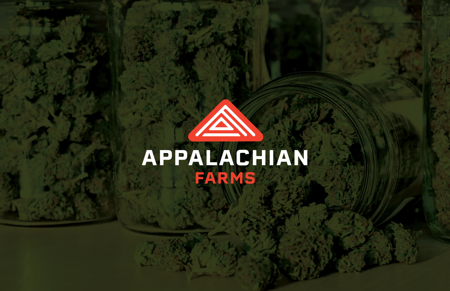 Appalachian Farms Brand Identity