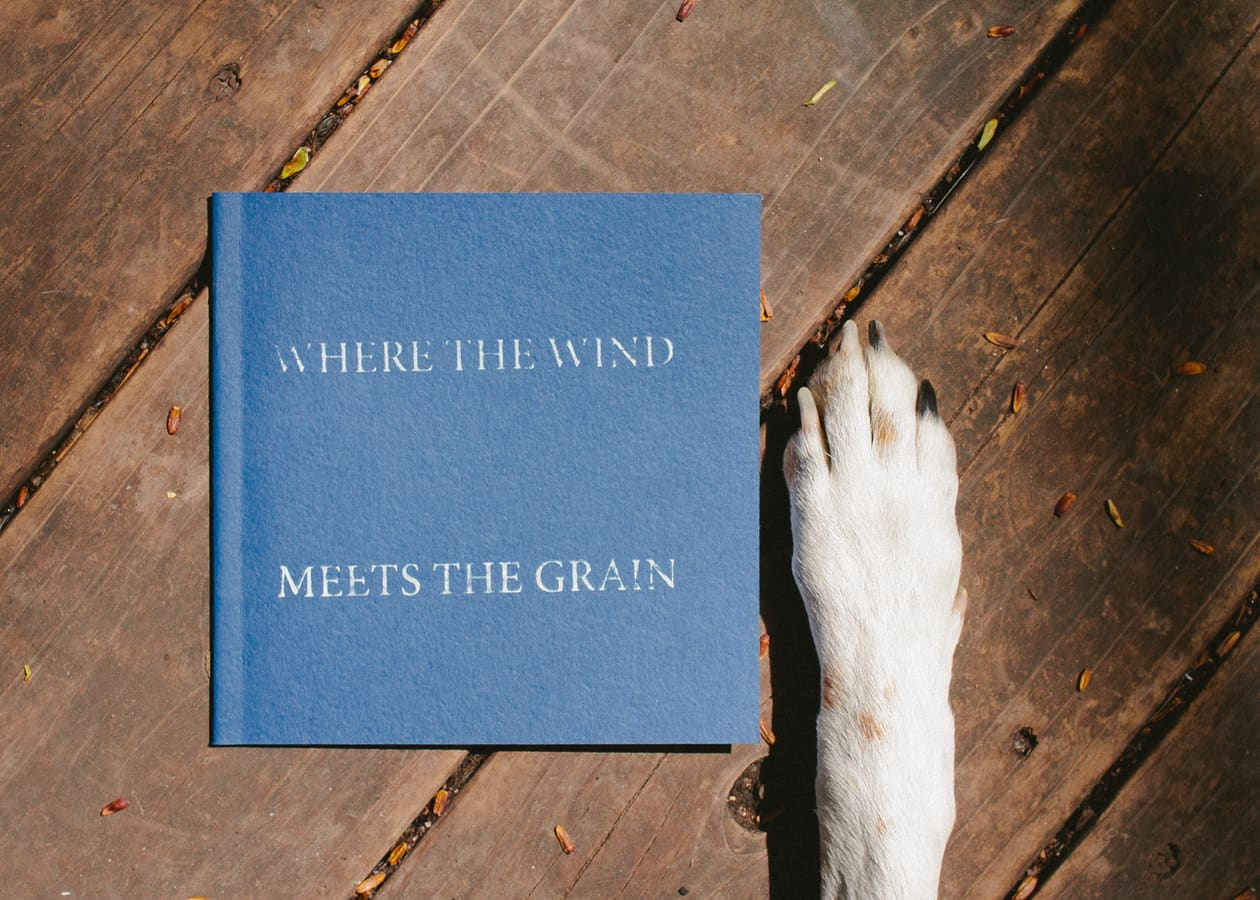 Where The Wind Meets the Grain