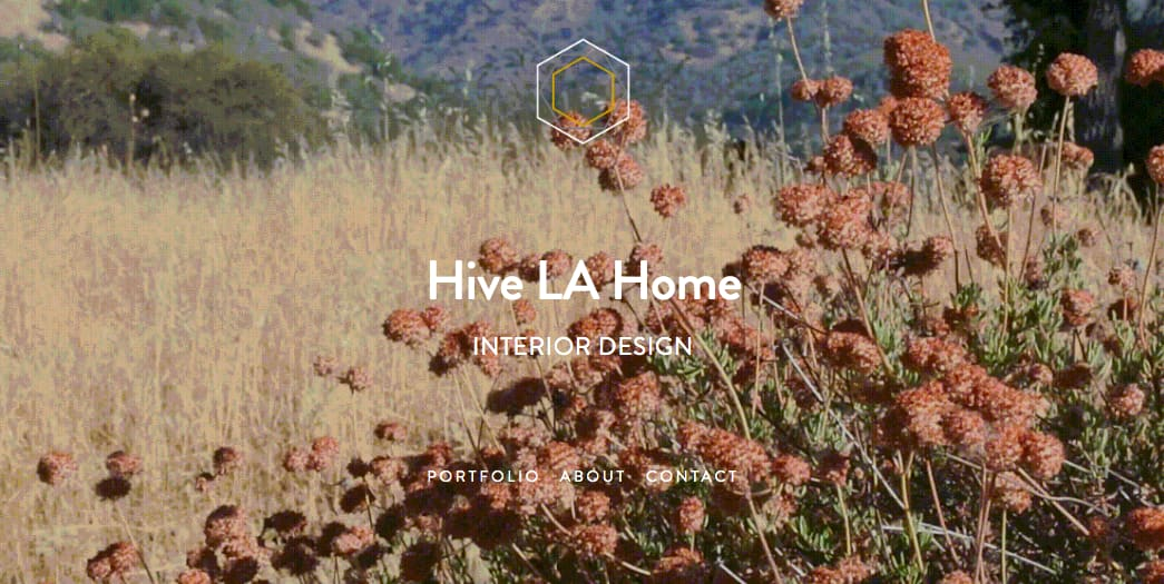 """Hive LA Home"" Web Design, Branding & Content Creation"