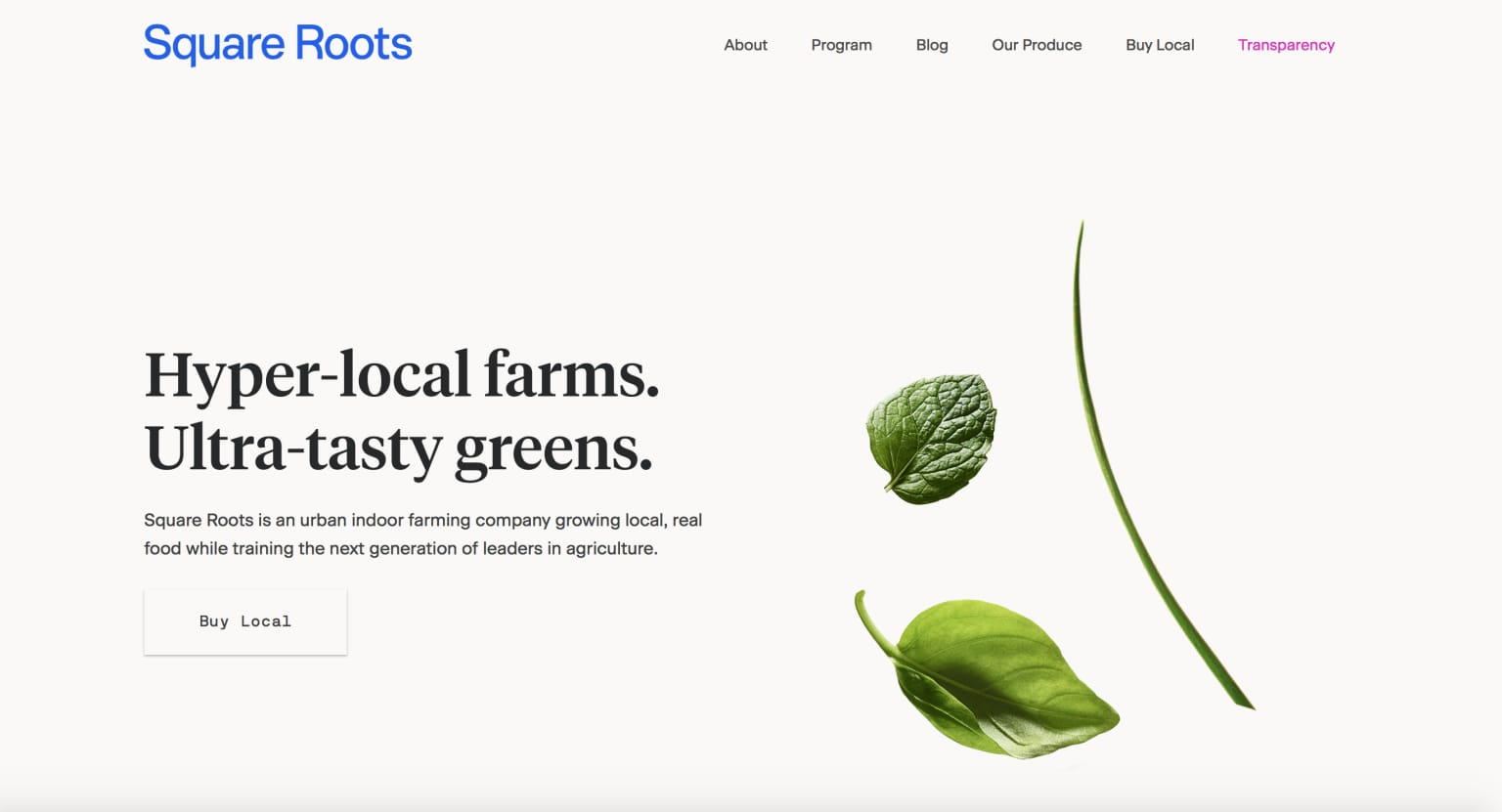Square Roots//Web Copy & Editorial Content