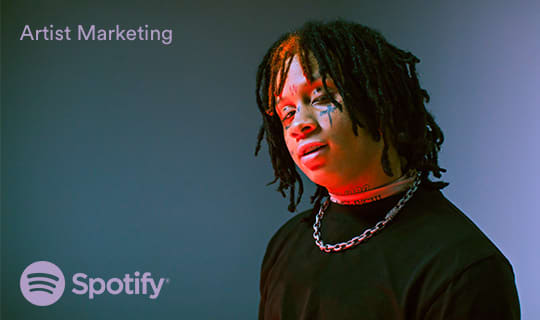 Spotify Artist Marketing & Content