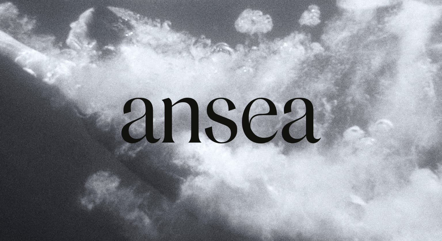 Ansea Branding, Packaging and Website Design