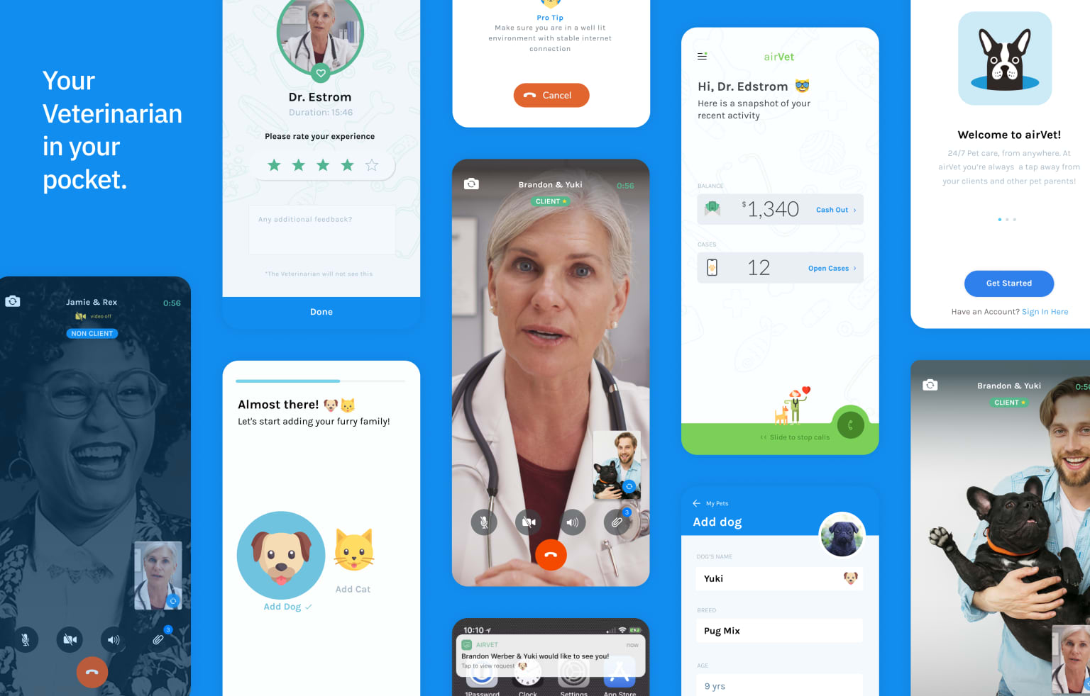 Airvet: 24/7 Pet care in your pocket