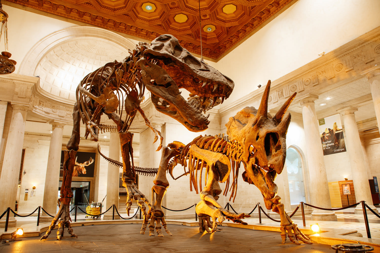 Natural History Museums of Los Angeles County