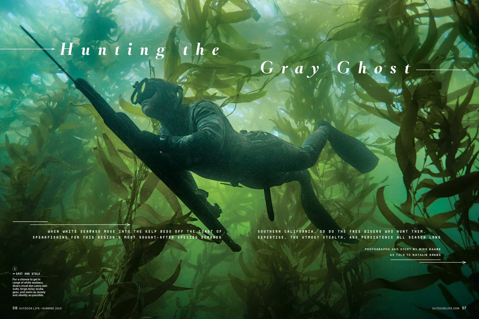 Spearfishing by Mike Raabe