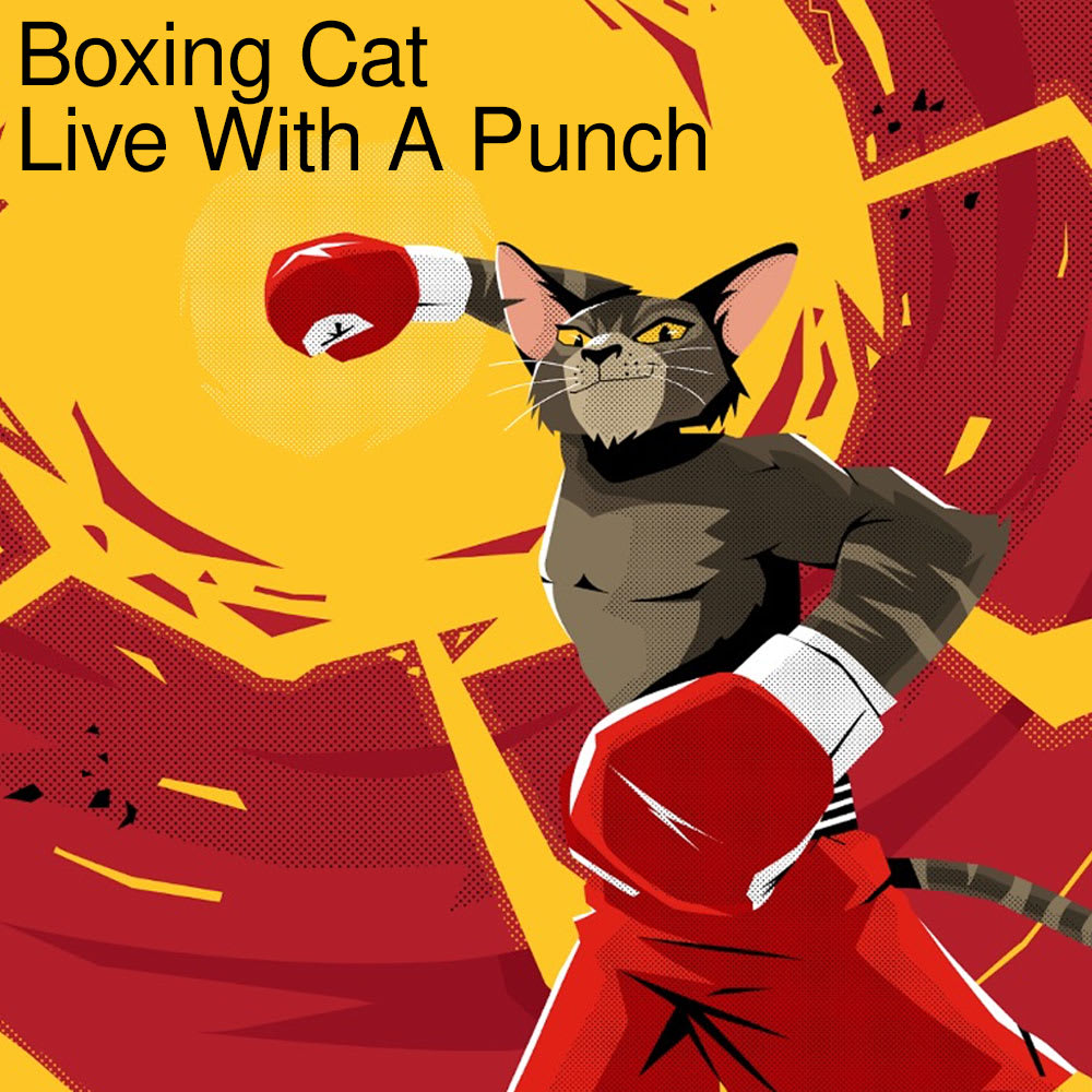Boxing Cat - Live with A Punch