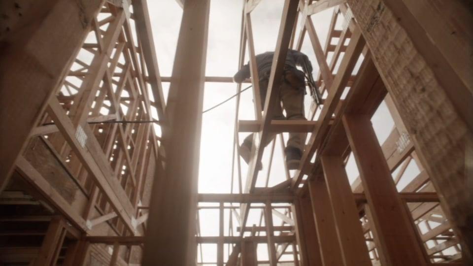 Dickies - Built to Work