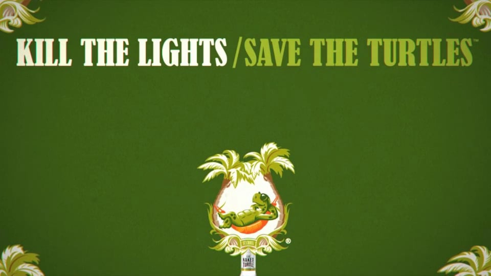 Kill The Lights / Save The Turtles
