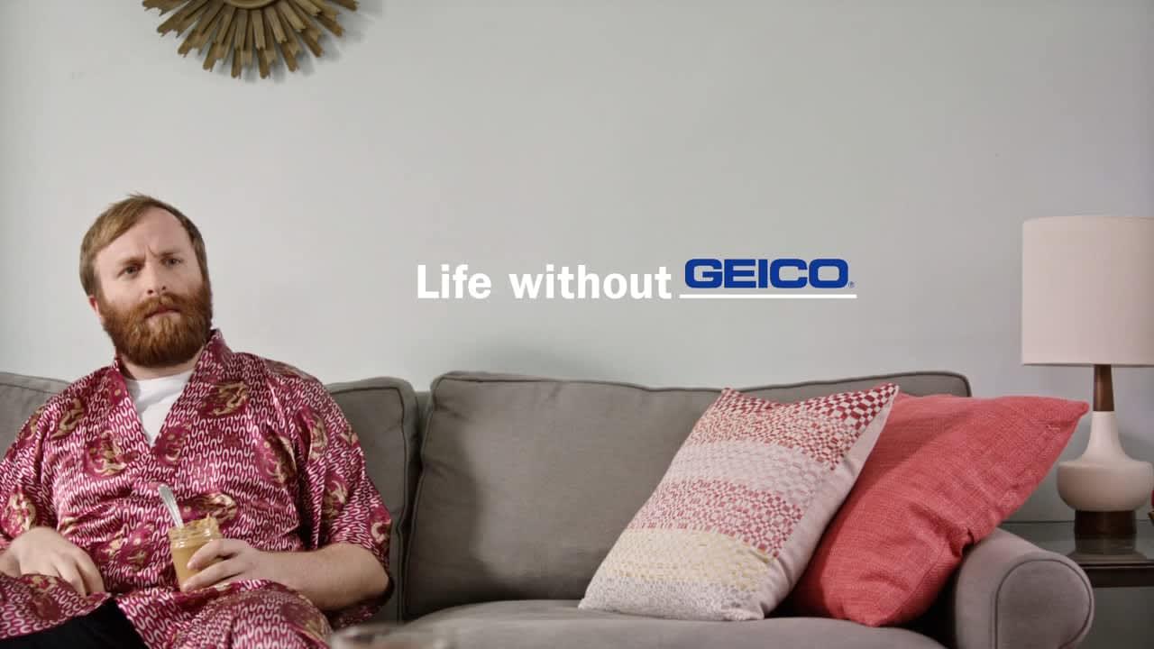 """Geico """"Life Without Geico"""""""