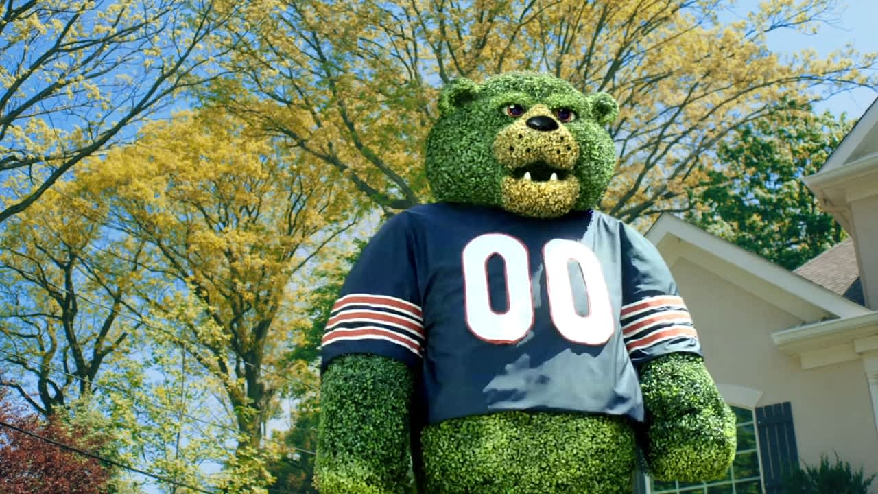 Chicago Bears - Green Envy