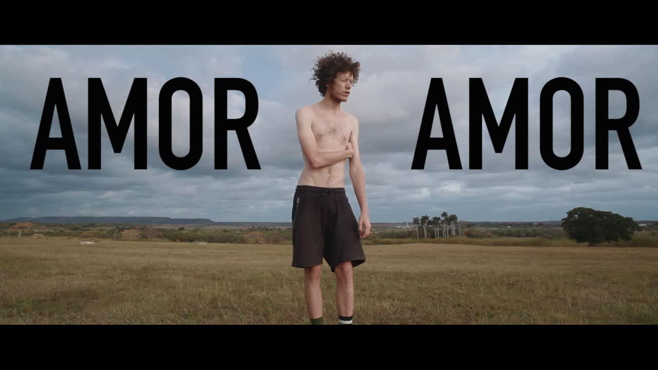 Short Film - Amor, Amor