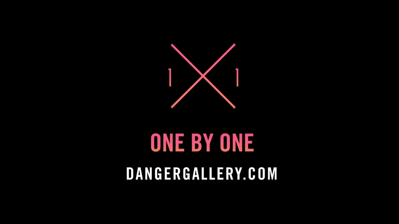 Launch Video for Danger Gallery Artshow