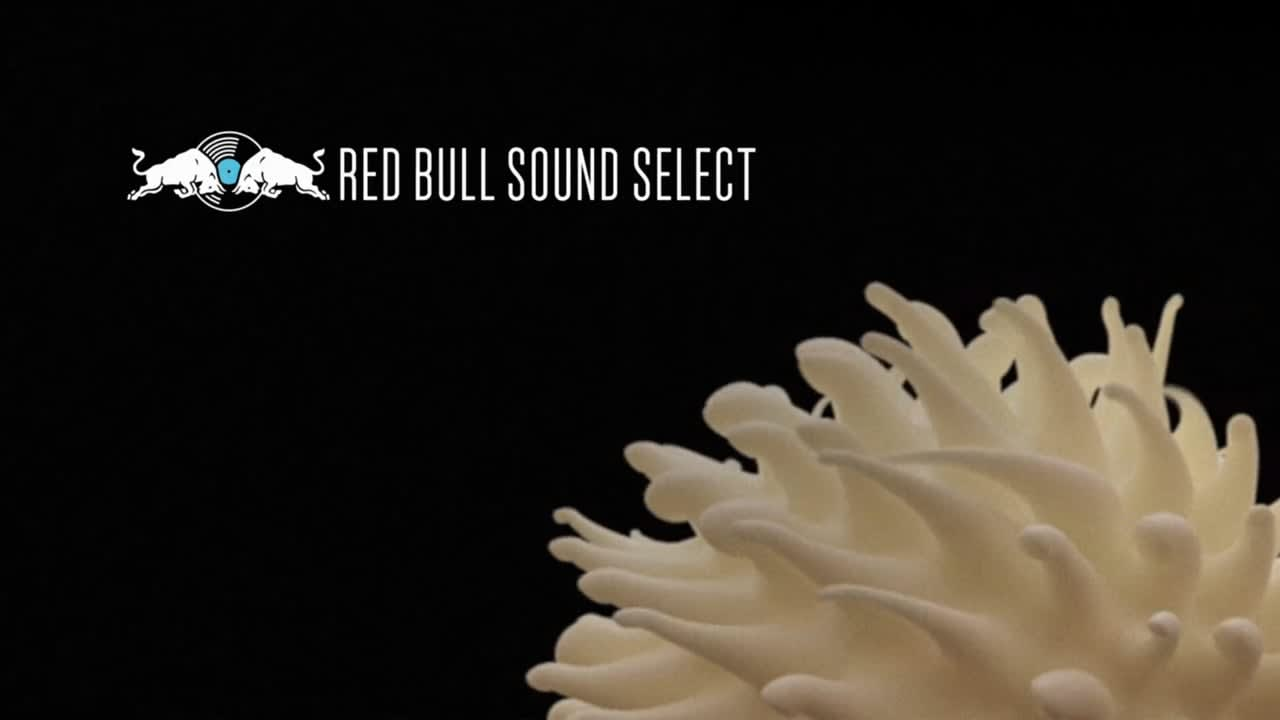Red Bull Sound Select - 30 Days in Chicago