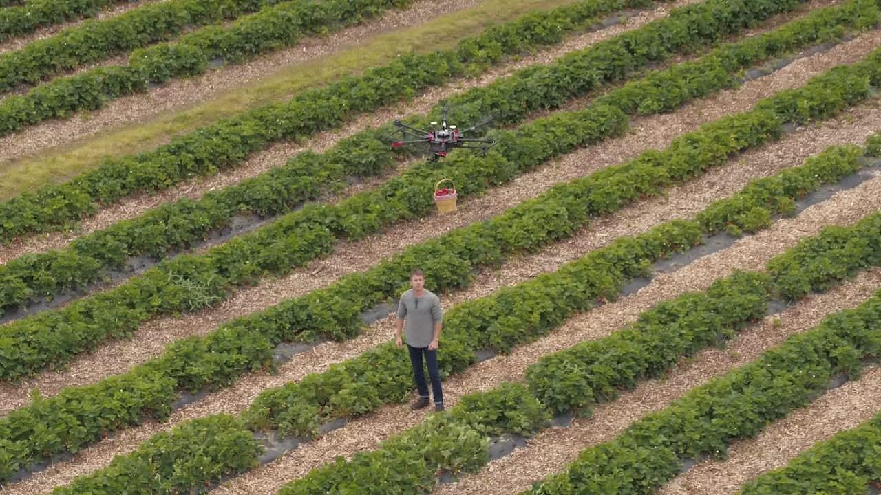IHOP Market Fresh Farm to Table Video