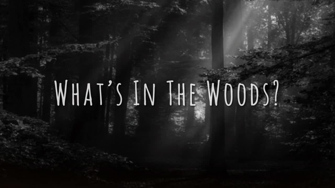 """What's In The Woods?"" Short Film"