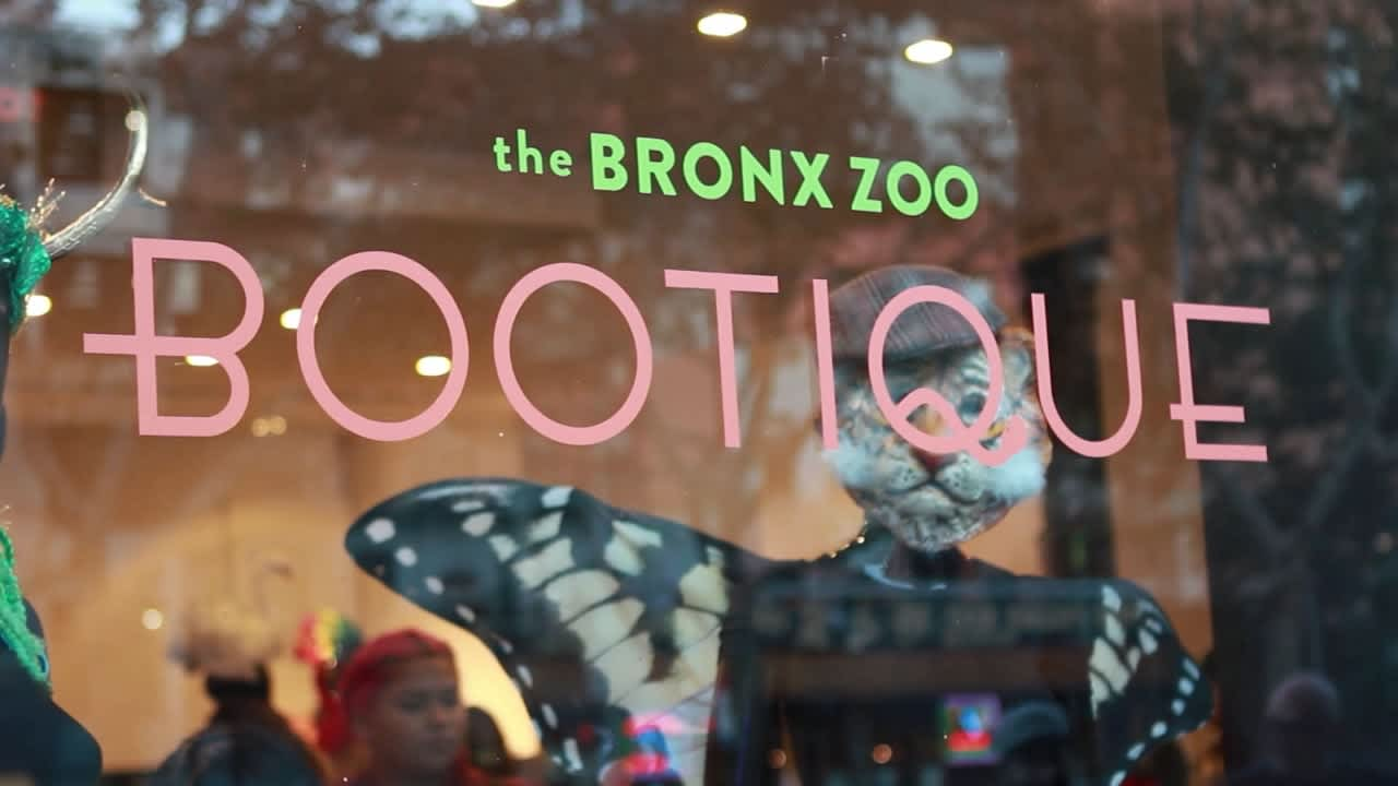 The Bronx Zoo Bootique