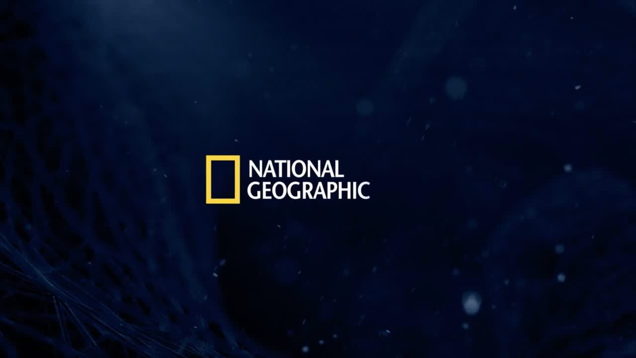 National Geographic | PhRMA - Neurotechnology
