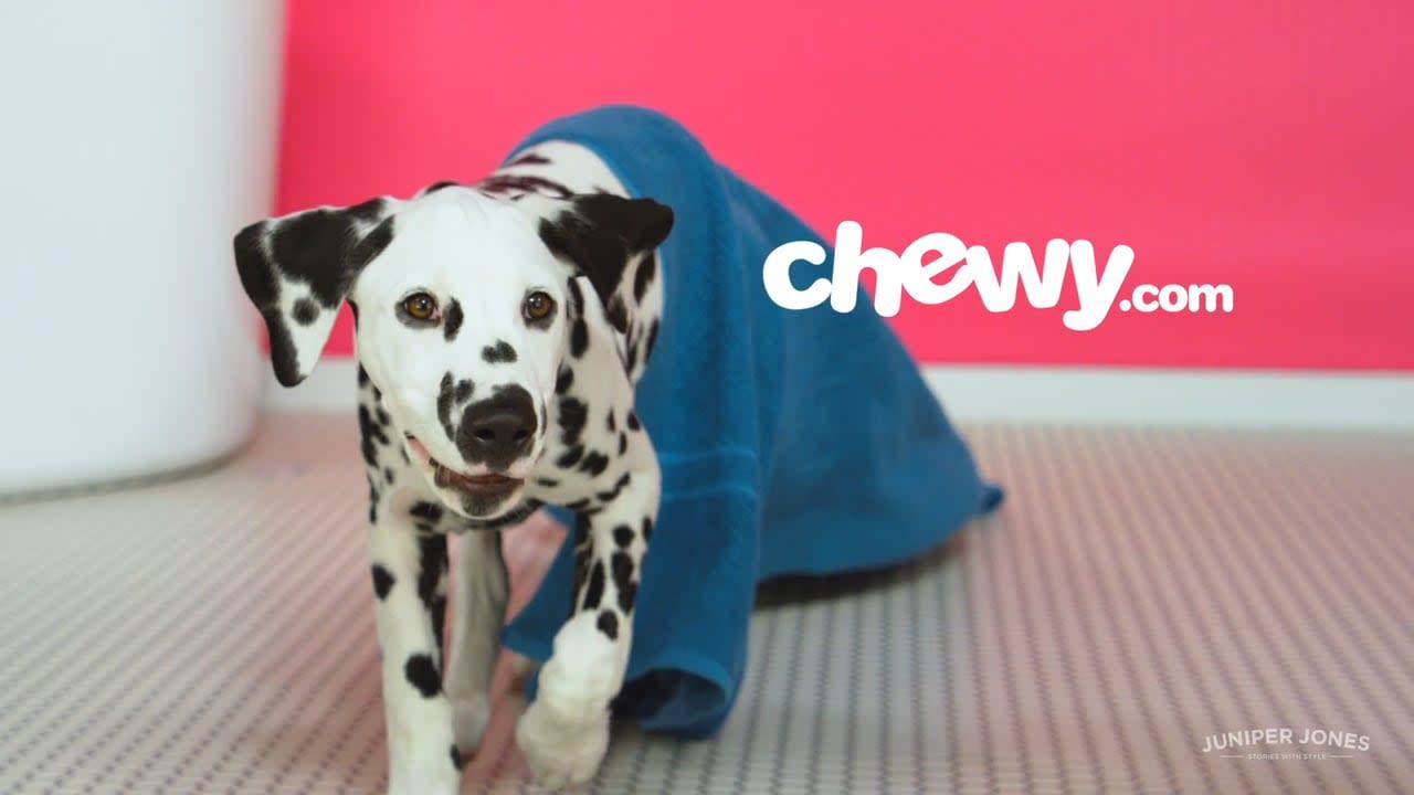 "Chewy.com ""Anthem"""