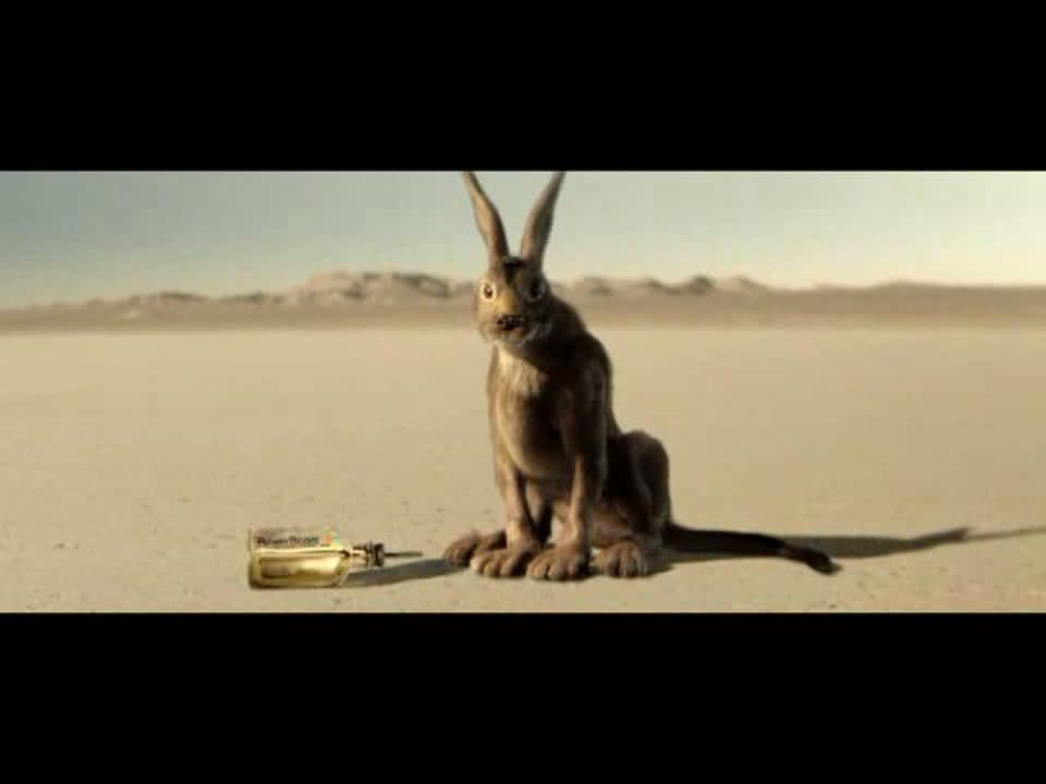 Comcast Rabbit