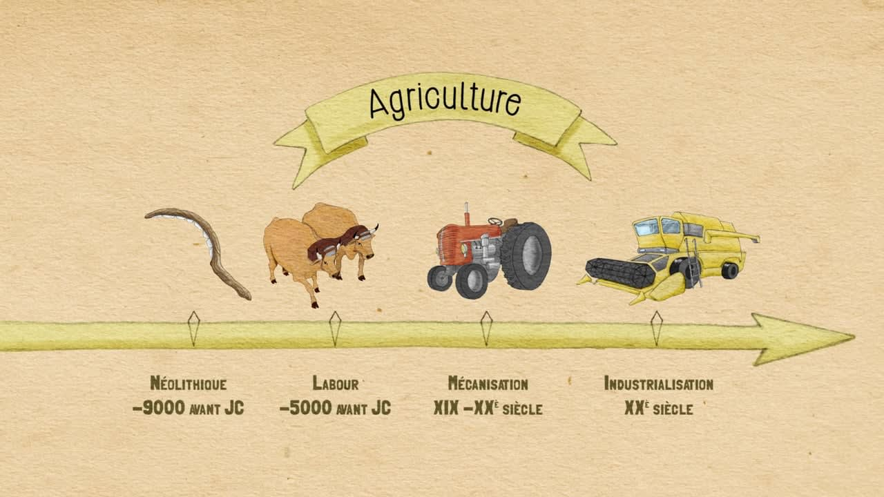 The Awakening of Permaculture
